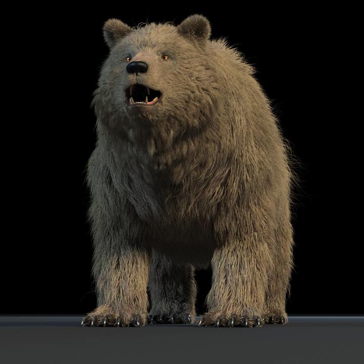 Bear Maya Rig_DOWNLOADS Bear Maya Rig Bear Maya Rig,DOWNLOADS