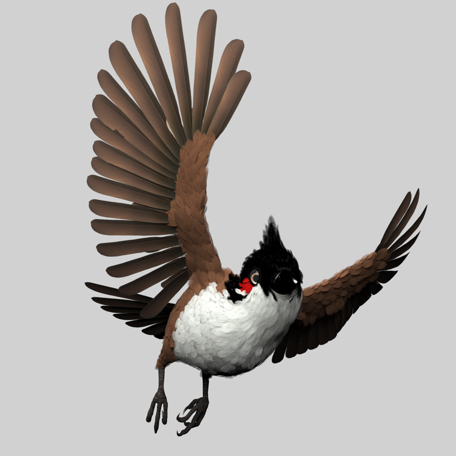 Red Whisker Bird Maya Rig Introduction Red Whisker Red Whisker,Bird Maya Rig,Introduction