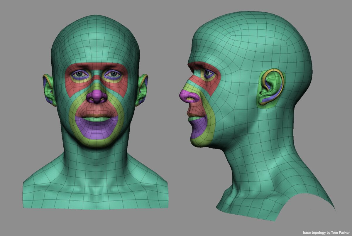 Facial Topology mini tutorial_By Tom Parker Facial Topology mini tutorial Facial Topology mini tutorial,tom parker